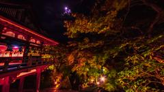 月夜の談山神社
