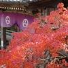 竹林寺の紅葉