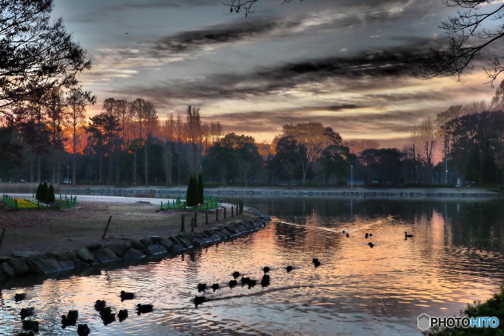 12月の公園