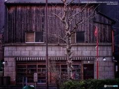 OLD EYE -Wood-