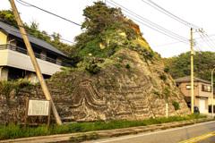 もう一つのスランプ構造  (県指定天然記念物)