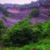 ヨウバケ(陽 崖)陽の当たる崖