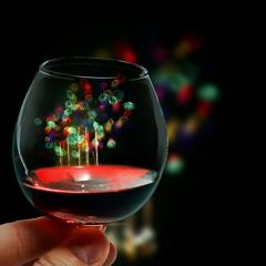 ガラス越しの千輪菊