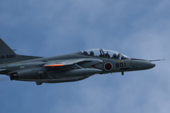 今年初の瀬長島 T-4