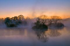 朝霧の浮島周辺水辺公園 2
