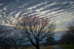 雲の朝 3完