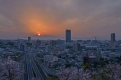 桜色の朝 1