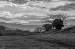 雲の朝 1