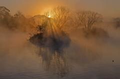朝霧の浮島周辺水辺公園 3