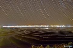 星降る干潟