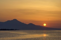 サギと夕陽 3