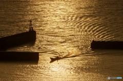 有明海の夕暮れ 1
