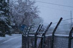 雪スナップ