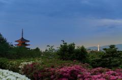 京都のふたつの塔.1