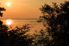 湖面に輝く光と響く音