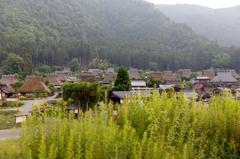 ☆語り継ぎたい日本の原風景--かやぶきの里.01