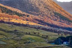 秋彩と小屋