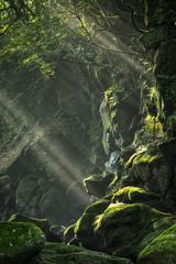 光の行き先
