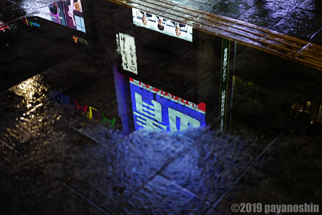 夜街ネオンの水溜まりリフレクション