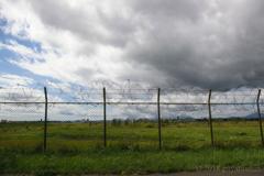 柵の向こうの自由