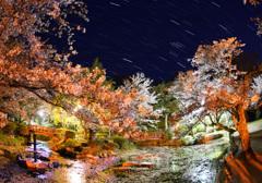 打吹公園の桜と冬の大三角