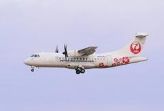 ATR-42ハイビスカス到着