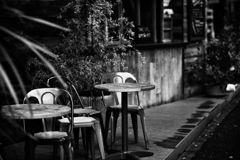 いつものcafe