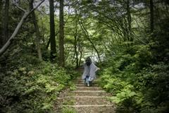 森の中の舞姫