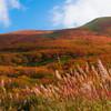 みちのくの秋を訪ねて~鳥海山