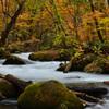 秋の奥入瀬渓流