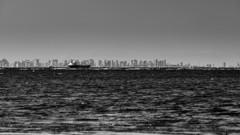 湾岸エリア