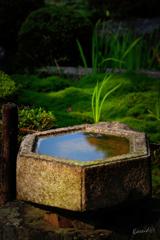 六角の手水石鉢