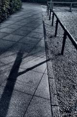 にっぽんの竹柵
