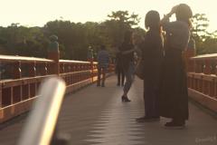 賑わう橋上