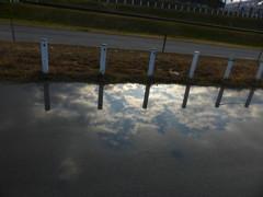 水たまりの逆空