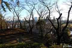 多摩川台公園から東横線