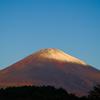 富士の紅葉①