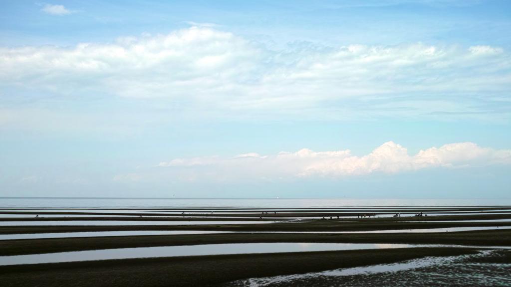 潮干狩り〜青空を干潟に映して〜