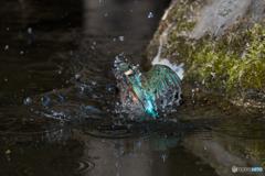 水のベール