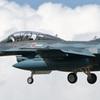 F-2B_3SQ_5692