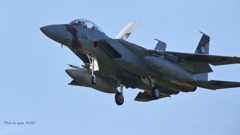 F-15DJ_AGR_9673