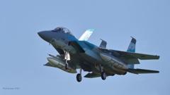 F-15DJ_AGR_9418