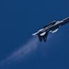 F-15DJ_AGR_3575