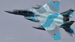 F-15DJ_AGR_9823