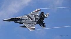 F-15DJ_AGR_0002