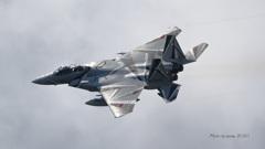 F-15DJ_AGR_0016