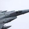 F-15J_303SQ_8537
