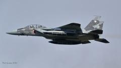 F-15DJ_AGR_9723