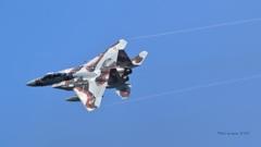 F-15DJ_AGR_9938