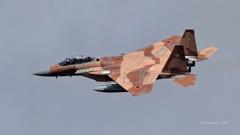 F-15DJ_AGR_9754